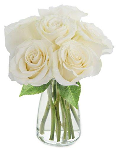 KaBloom Bouquet of 6 Fresh Cut White Roses (Farm-Fresh, Long-Stem) with Vase