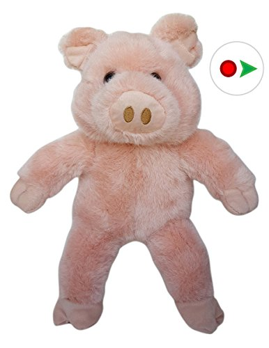 Record Your Own Plush 16 inch Stuffed Snuffle the Pig - Ready 2 Love in a Few Easy - Ready Babes