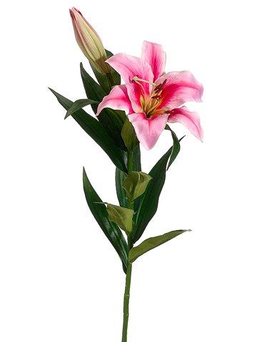 (Allstate Floral FSL122-RB 35 in. Stargazer Lily Spray Rubrum - Case of 12)
