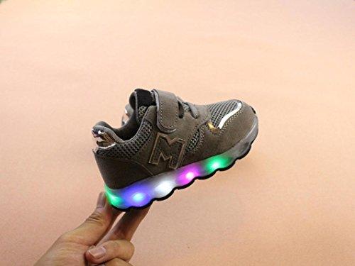 VENMO Kleinkind Kinder Mesh Schuhe Kinder Babyschuhe LED leuchten leuchtende Turnschuhe Schuhe Weiche Segeltuch-Schuhe Sneakers Turnschuhe Freizeitschuhe Laufschuhe Sportschuhe Turnschuhe Gray