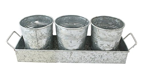 Well Pack Box 3 Pot Galvanized Planter 15'' x 9'' x 3'' Tray Serveware Set Kitchen Collection Great for Gardening, Decoration, And Beverage Holding by Well Pack Box