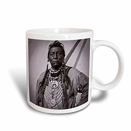 3dRose Two Guns White Calf Blackfoot Indian Chief, Profile on Buffalo Nickel, Ceramic Mug, 11-Oz