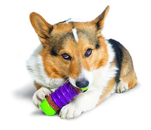 ltra Stratos Dog Toy, Medium ()