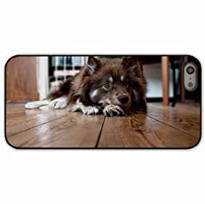 iPhone 5 5S Black Hardshell Case dog floor lying furry waiting Desin Images Protector Back Cover