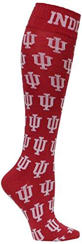 NCAA Indiana Hoosiers Dress Socks, One Size, Red