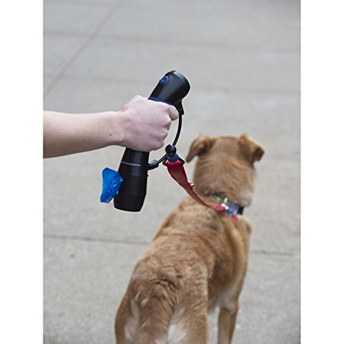 Image of Dog Gone Smart I'm Gismo- Handle with Poop Bag Dispenser in Electric Blue