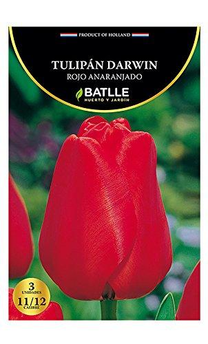 Bulbos - Tulipán Darwin Rojo - Batlle Semillas Batlle 071406bols