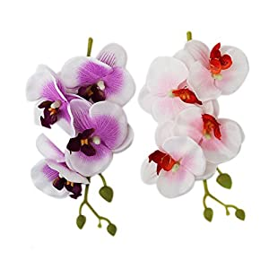 100% Quality Led Decorative Home Fake Phalaenopsis Flower Bedroom Outdoor Solar Light Potted Plant Nightlight Garden Hotel Indoor Office Utmost In Convenience Led Table Lamps Led Lamps