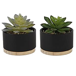 Flora Bunda Artificial Plant Artificial Succulent in 4 Inch Marble Ceramic Planter Wood Base Mid Century Pot,Marble, Set of 2 4