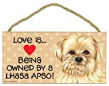 Love is being owned by a Lhasa Apso 5