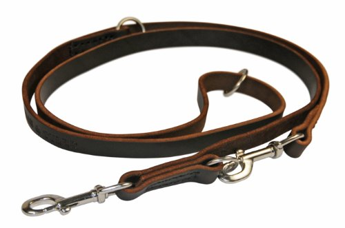 Dean & Tyler Dynamite Multifunctional Dog Leash with Stainless Steel Hardware, 5-Feet by 1/2-Inch, Tan by Dean & Tyler