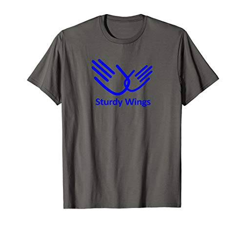 The Role Models Sturdy Wings Novelty T-Shirt (The Best Role Models)