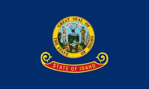 Americas Flag SF4X6NOID1 4-Foot by 6-Foot Nylon Idaho Sta...