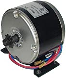 AlveyTech 24 Volt 250 Watt Motor for the Razor E300, MX350 (Ver 9+), MX400, and Pocket Mod
