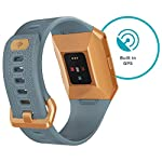 Fitbit-Ionic-Health-Fitness-Smartwatch-GPS-with-Heart-Rate-Swim-Tracking-Music-Slate-BlueBurnt-Orange