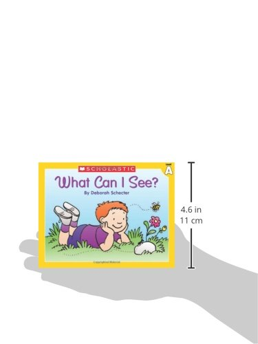 Little Leveled Readers: Level A - What Can I See?: Just the Right Level to Help Young Readers Soar!