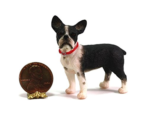Dollhouse Miniature 1:24 Scale Boston Terrier Dog by Falcon Miniatures