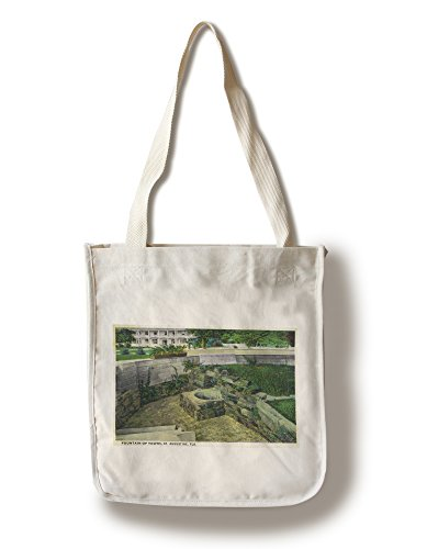 St. Augustine, Florida - Fountain of Youth View (100% Cotton Tote Bag - Reusable, Gussets, Made in - Augustine Shopping St In