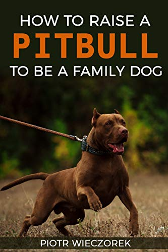 (How To Raise A Pitbull To Be A Family Dog)