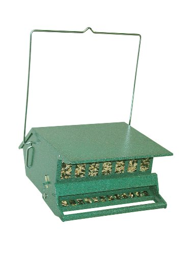 Bird's Choice Squirrel Proof Bird Feeder