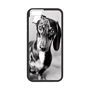 """DIY Phone Case for Iphone6 Plus 5.5"""", Cute Dog Dachshund Cover Case - HL-693527"""