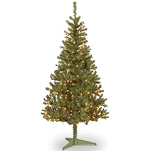 National Tree Canadain Grande Fir Wrapped Tree with 300 Multi Lights 20