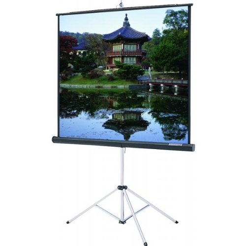 Buy tripod projector screen grey
