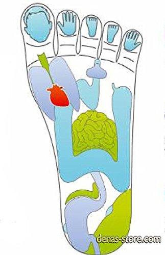 Denas Reflexo foe all model Denas devices orthopedic problems feet joints arthrosis arthritisgout flatfoot valgus deformity by Denas MS (Image #3)