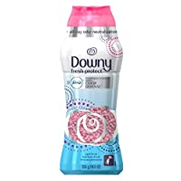 Downy Fresh Protect April Fresh In-Wash Odor Defense 19.5OZ
