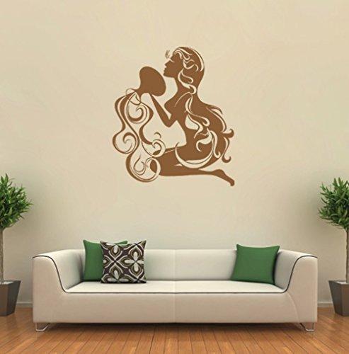 ik1415 Wall Decal Sticker Aquarius zodiac sign bedroom living room