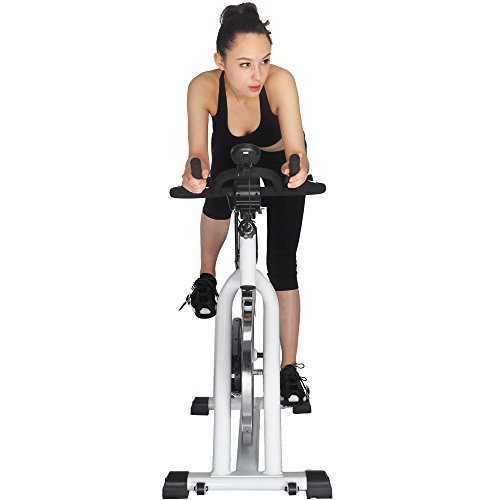 Indoor Exercise Bike, Cycling Trainer with LCD Monitor & Free Water Bottle, Stationary Bicycle Fitness Equipment with 30lbs Flywheel
