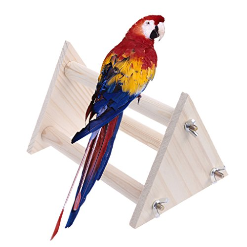- Hukai Funny Parrot Bird Perch Stand Play Toys Gym Wooden Activity Table Top Playstand