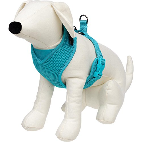 petco-adjustable-mesh-harness-for-dogs-in-teal