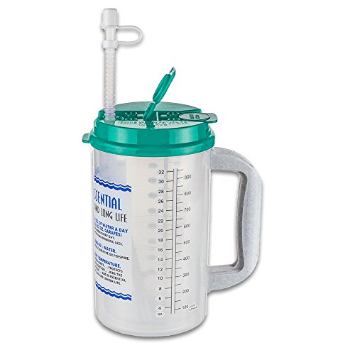 32 Oz W.E. Insulated Cold Drink Mug with Teal Lid and straw cap