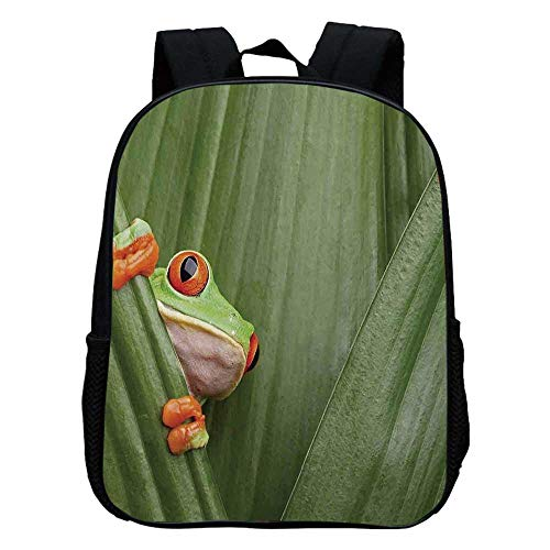 Animal Decor Durable Kindergarten Shoulder Bag,Red Eyed Tree Frog Crowling between Leaves Tropical Jungle Rainforest Night Art For school,11.8