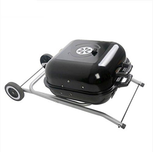 BBQ Grill esterno, Griglia a carbone, Griglia in acciaio inox, Griglia pieghevole multifunzione,48cm45cm82cm (7.3kg)