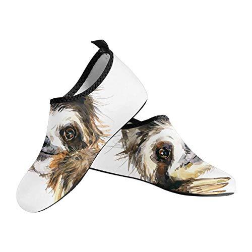 Sloth Faced Aqua Socks for Women US6-US12