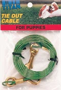 C Cable Tieout Puppy 12ft by Coastal Pet