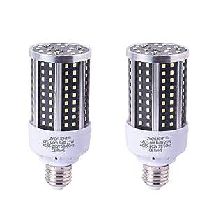 LED Corn Light Bulb, 200 Watt Equivalent LED Bulb, 25W Led Corn Light Bulb, Daylight 6000K, 2000LM E26 / E27 Base, Not-Dimmable,for Photo Light,Warehouse,Garage Lighting, Barn, Patio, etc. 2 Pack