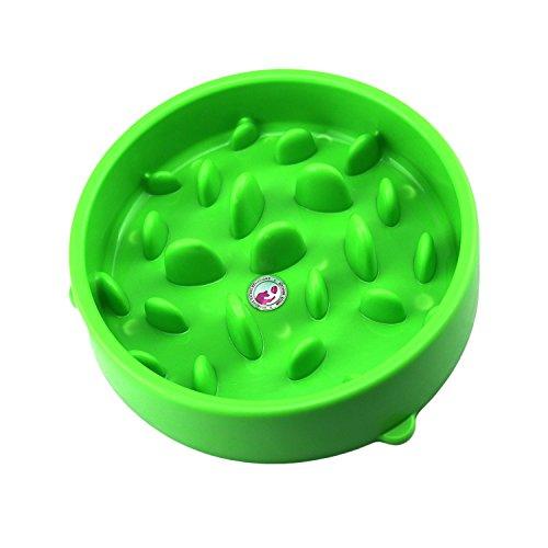 Da.Wa Pet Slow Feed Bowls Pet Food Bowl Dry Food Bowl Pet Supplies Dogs and Cats Food Bowl (Green)