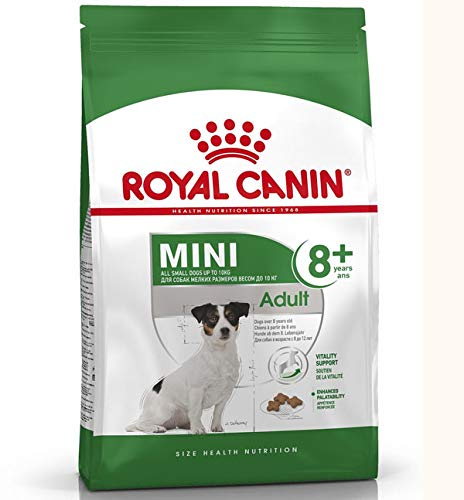 ROYAL CANIN Hundefutter Mini Adult 8+, 800 g
