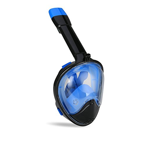 The 8 best snorkeling mask for beards