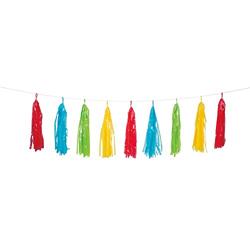 9ft Plastic Rainbow Tassel Garland (Length Ceiling Foot Drape 9)