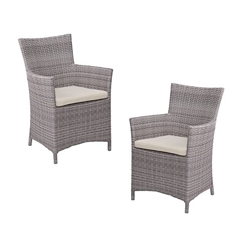 Bristow Outdoor Easy Chairs - Hand Woven Synthetic Wicker - 2 pc Set ()
