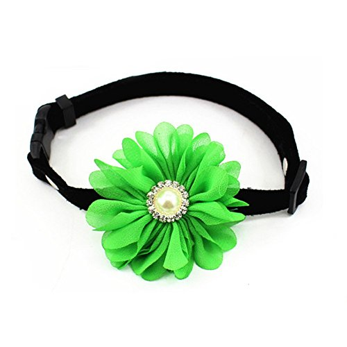 PetFavorites Rhinestones Daisy Flower Charm Suede Leather Dog Collar Breakaway Cat Collar Necklace Jewelry Pearl Small Dogs Girl Yorkie Chihuahua Birthday Clothes (Green, Size M) - Suede Safety Cat Collar