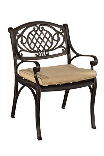 Hillsdale outdoor Esterton Dining Chair with Cushion (Set of 2), Black with Gold (Hillsdale Garden)