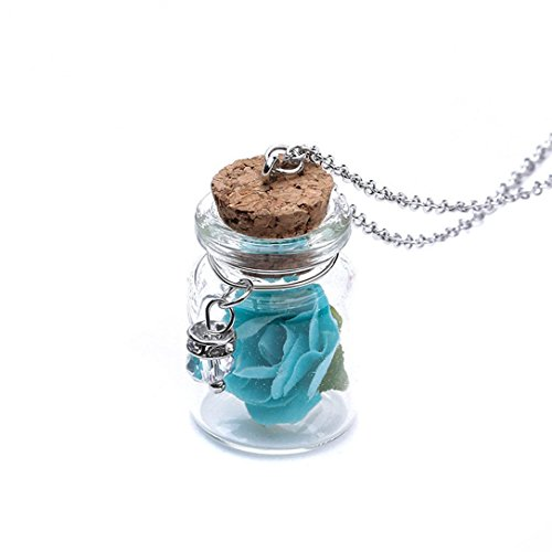 - Yunchuang Glow In The Dark Jewelry Necklace Glowing Flower Delicate Mini Glass Wishing Bottle household vacuum canister bags