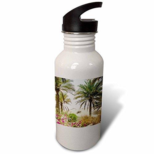 3drose-danita-delimont-beaches-resort-and-spa-dubai-flip-straw-21oz-water-bottle-wb-226128-2