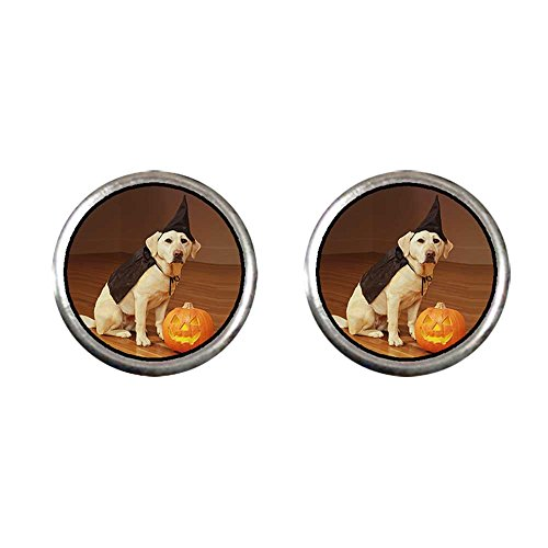 GiftJewelryShop Silver Plated dog Halloween costume pumpkin Photo Stud Earrings 10mm (Clip On Dog Ears Costume)