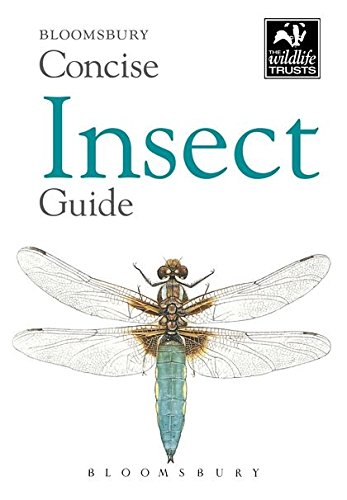 Concise Insect Guide (Bloomsbury Concise Guides)